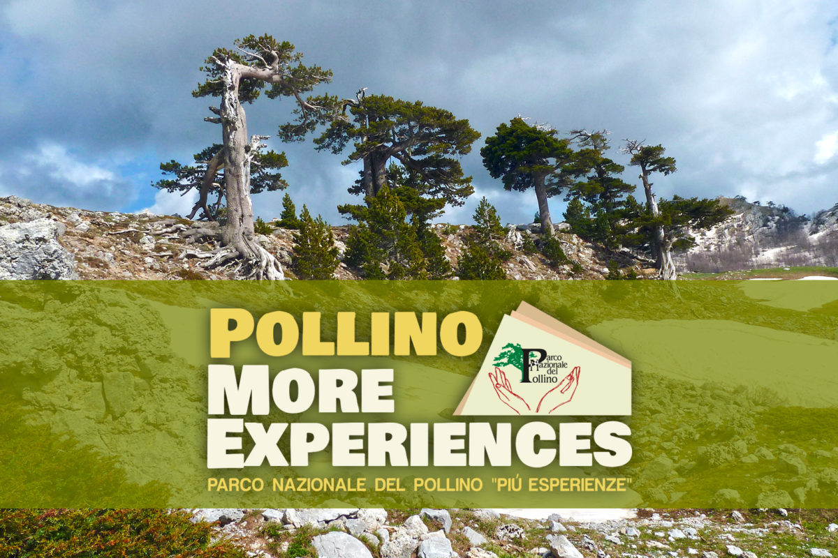 Pollino More Experiences<br>Documentario