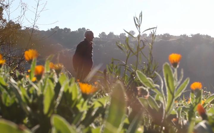 Radici, un documentario di Antonio Martino